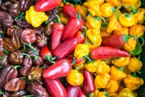 placetobw, bw-jetzt, visitbawu, Pforzheim,  Chili, Sauce, Soße, scharf, Ketchup, BBQ, Barbecue