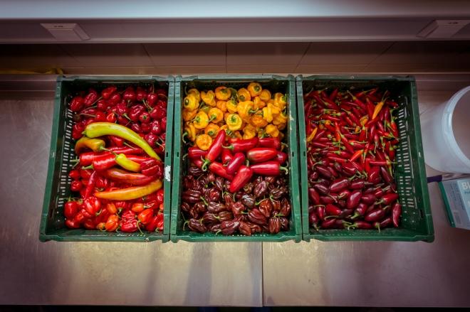 Chili, Soße, Sauce, Ketchup, BBQ, Barbecue, Hot, scharf, Manufaktur, Painmaker, Nowak, Herstellung
