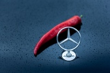 Mercedes Benz, Chili, Soße, Sauce, Ketchup, BBQ, Barbecue, Hot, scharf, Manufaktur, Painmaker, Nowak, Herstellung, Mercedes, S Klasse